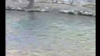 1993 SAHREN-2