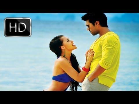 Yevadu Telugu Movie    Ayyo Paapam Full Song    Ram Charan Teja
