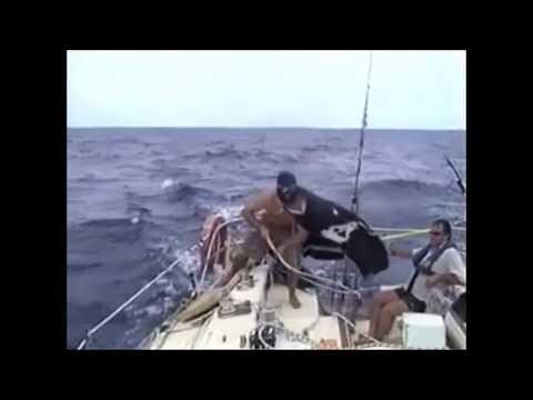 Auckland to Fiji Ocean Race 2006 - On Board Hotshot