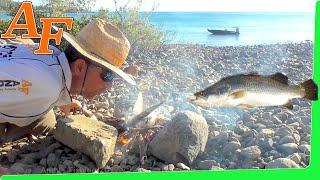 CATCH n COOK Salt Lemon Butter Pepper Barramundi Fish on fire at Beach EP.363