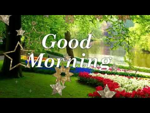 Good Morning Whatsapp Status Video Songgood Morning Whatsapp Status Song Good Morning Wishes