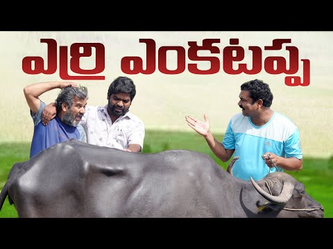 బేర గాడు | Bargain | Kallivalli | My Village Show Comedy