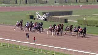 Vidéo de la course PMU PRIX DE LYON-LA-SOIE
