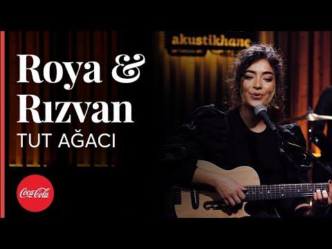 Roya & Rızvan - Tut Ağacı / Akustikhane #hissethezzal