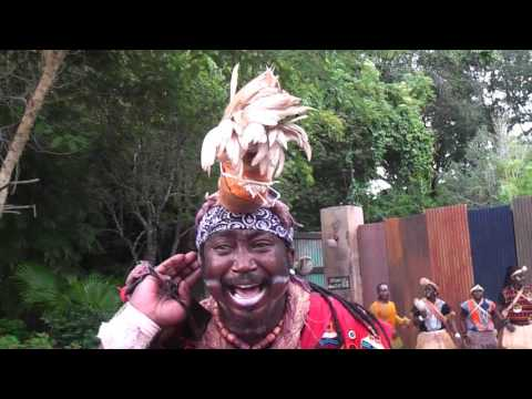 African Acrobats in Animal Kingdom