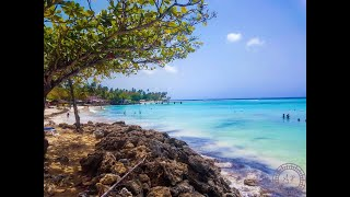 15 Things to do in Tobago