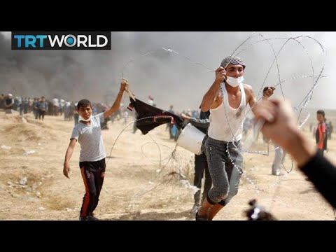 Israel-Palestine Tensions: More Than 30 Palestinians Killed In Protests