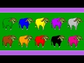 Surprise Kids Hub | Learn Colors for Kids Children Toddlers with Yak | Learn Colour for Kids