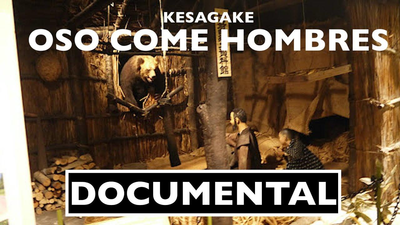 El Oso Come Hombres 🐻 El Incidente del Oso Pardo de Sankebetsu/ KESAGAKE #Tendencia
