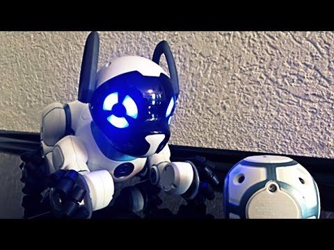 Chip WowWee / собака робот чип / мой подарок на день рождения