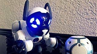 Chip WowWee / собака робот чіп / мій подарунок на день народження