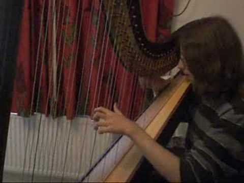 Sprout And The Bean ( Joanna Newsom Harp Cover )