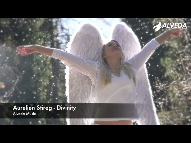 Aurelien Stireg - Divinity (Official Music Video)