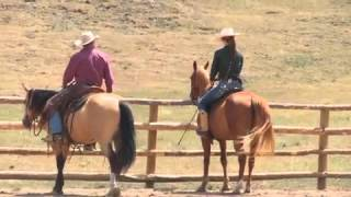 Teach Your Horse to Go Sideways Under Saddle with Pat Parelli