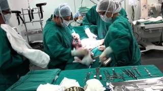 Nació mi bebé y se llama Luna Victoria