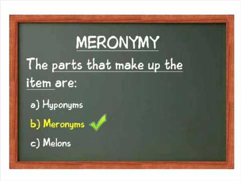 Hyponymy & Meronymy Part 3 - Putting both together