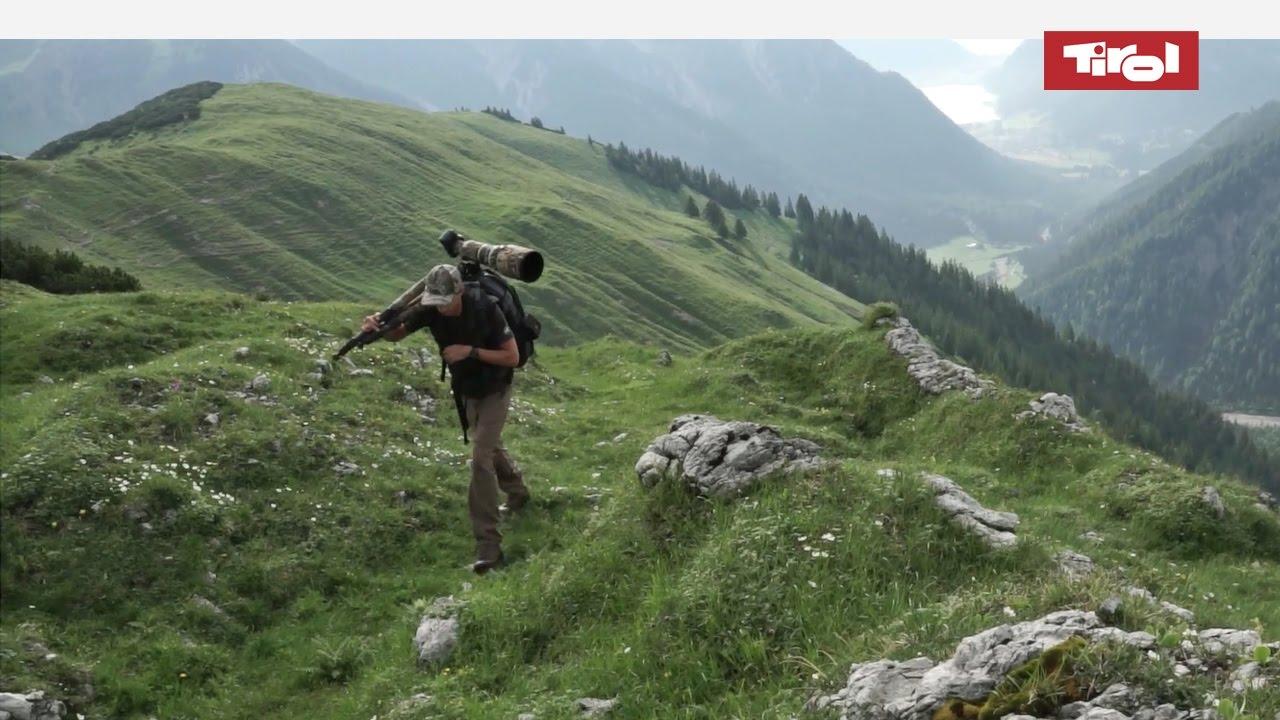 Wildlife Photography in the Alps (Tyrol, Austria)