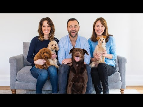 Pooches at Play Series 1 Episode 6