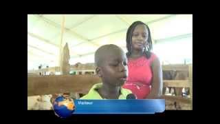 Les enfants à la découverte des animaux du Salon de l'Agriculture d'Abidjan
