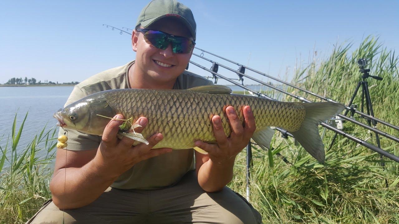 рыбалка карася в прудах на удочку