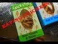 Hungry or Nah?!|| Salt & Vinegar Crickets