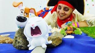 Тайная жизнь домашних животных. Супергерои и пираты