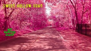 MY HAUNTED DIARY – Sweet Hollow Road Marys Grave Cemetery Overpass Long Island Paranormal