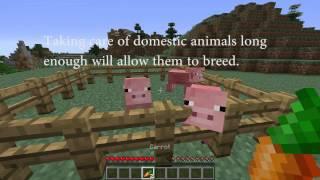 Minecraft's Renewable and Nonrenewable Resources.