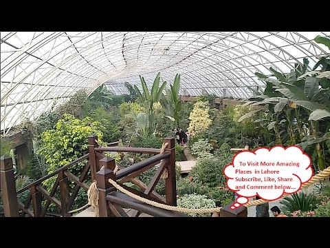 Butterfly House full video in Botanical Park Jallo Lahore Pakistan