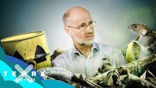 Wohin mit dem Atommüll? | Harald Lesch