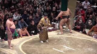 【決勝】高安×嘉風 2019年大相撲トーナメント