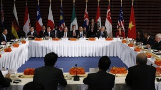 TPP vs. Human Rights: Groups Express Concern Over Record of Member Nations