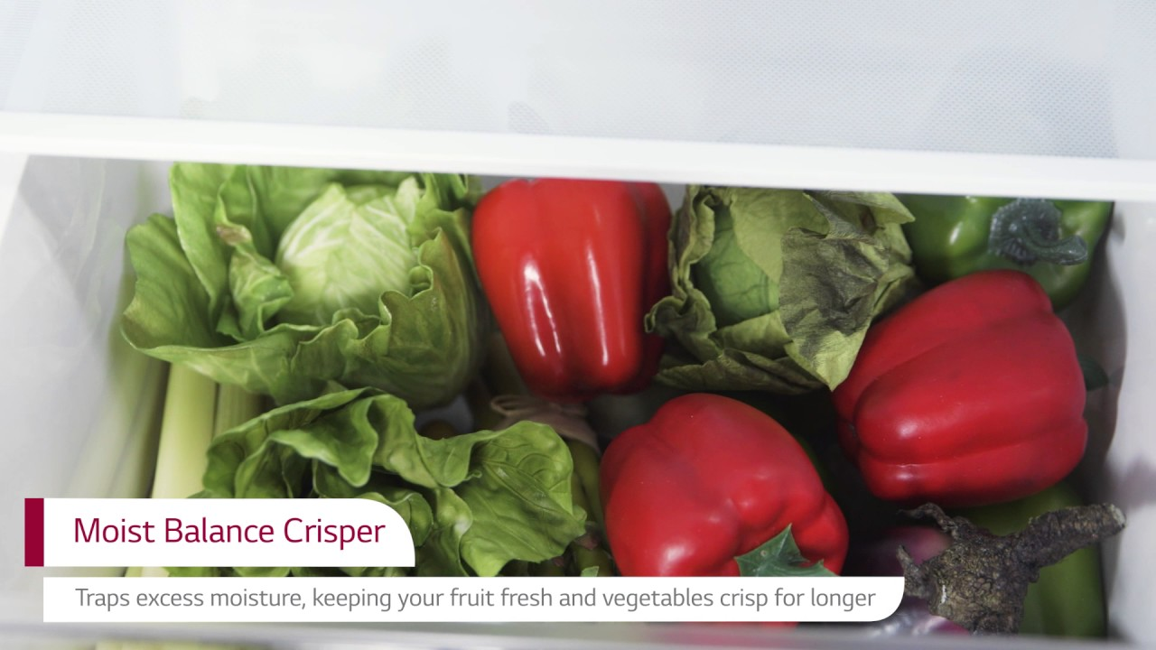 Discover The LG GBB59PZRZS Refrigerator