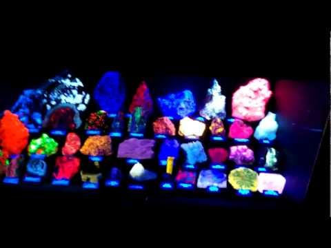 Fluorescent mineral display, Northern Calif. Fluorescent Mineral Society, 2012