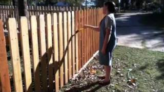 A little fun fence painting Thumbnail