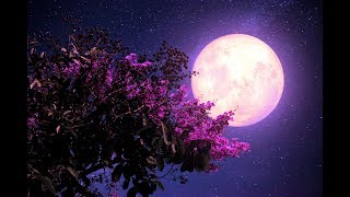 Healing Sleep Patterns | Allowing Deep Sleep ➤ 432Hz Miracle Music | Fall Asleep Fast and Easy
