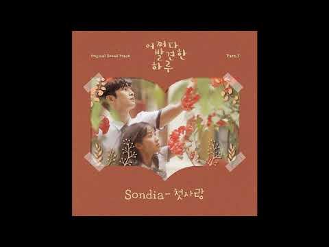 손디아(Sondia) - 첫사랑(First Love) 1시간(1hour)