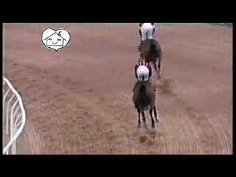 netg-charity-horse-race-part-2