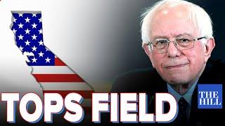 SHOCK POLL: Bernie tops the field in California as Warren slides