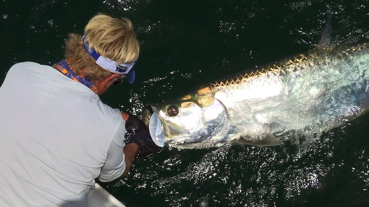 Boca grande fishing for tarpon fish on the beach doovi for Boca grande tarpon fishing