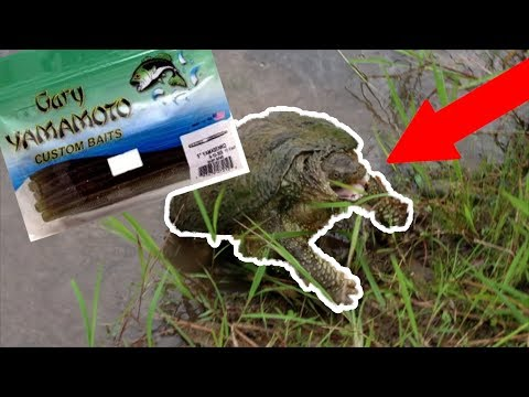 Snapping Turtle On A Senko!!! (MUST WATCH)