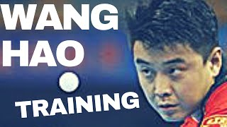 Training With WANG HAO and LIN GAOYUAN (Rare Private Record) @ WORLD CUP 2017 TABLE TENNIS thumbnail