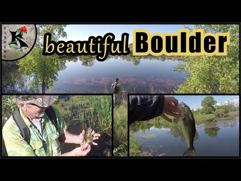 Fishing Boulder, Colorado: Sawhill & Walden Ponds - Good Scouting Report | Koaw Nature