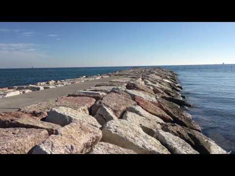 Il mare degli Alberoni