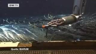 Öl im Meer - wie verletzlich ist die Natur? | Projekt Zukunft