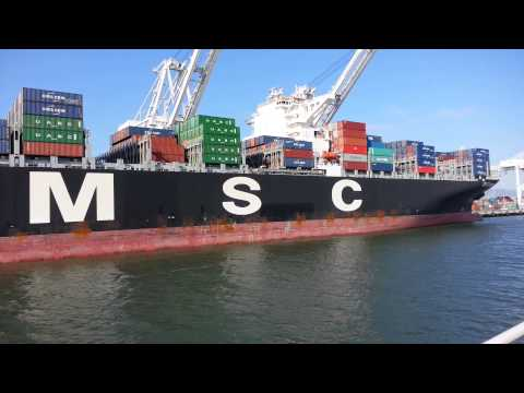 Ferry Ride View. Container Ship x 3. NYK Line Terra, APL Dublin, MSC CGM Margrit