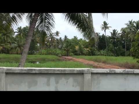 Waterfront Property-25.32 acres at Kumarakom Konchumada (Cochin, Kerala, India)