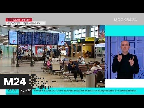 Нормы провоза бесплатного багажа изменят российские авиакомпании - Москва 24