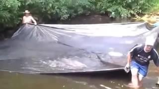 Очень необычная рыбалка. Ловля азиатского карпа на полиэтиленовую пленку(Очень необычная рыбалка. Ловля азиатского карпа на полиэтиленовую пленку., 2016-05-25T09:13:10.000Z)