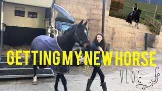 GETTING MY NEW HORSE!! || Vlog